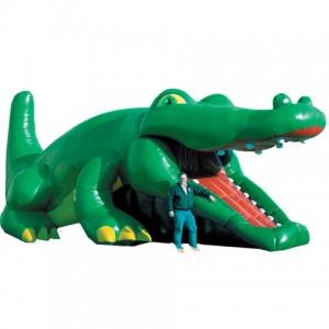 Crocodile_Hide_N_Seek