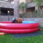 Mechanical Bull Rentals and other fun Western ideas!